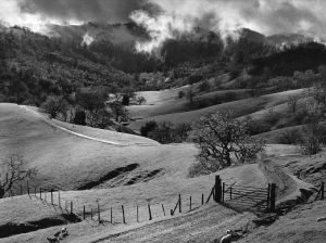 ansel-adams-landscape-photography-pasture-sonoma-county