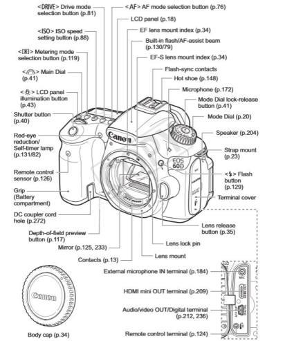 Canon D60 Description
