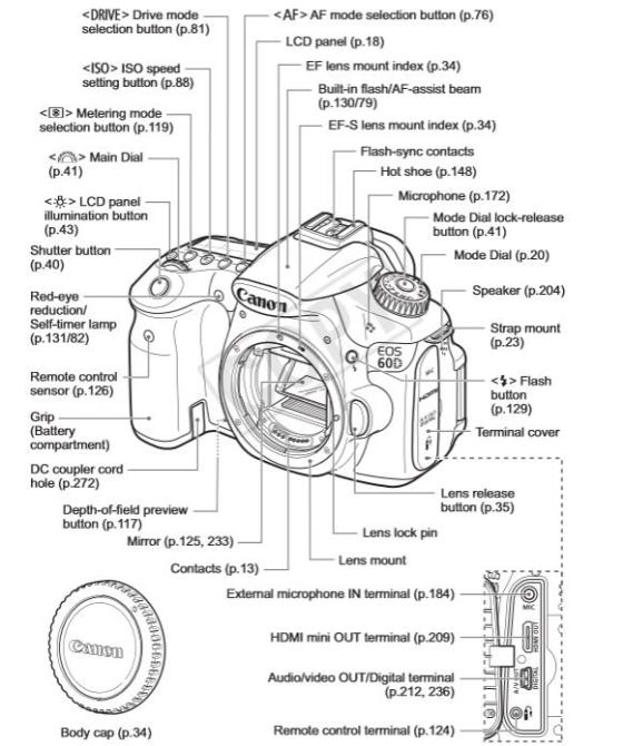 Canon D60 Description