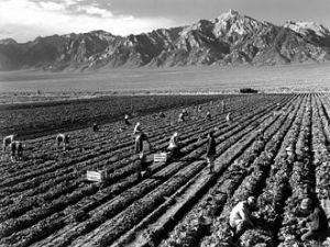Manzanar Japanese internment center, World War II, California