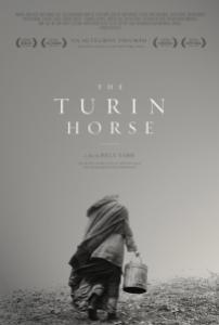 the-turin-horse-poster-art