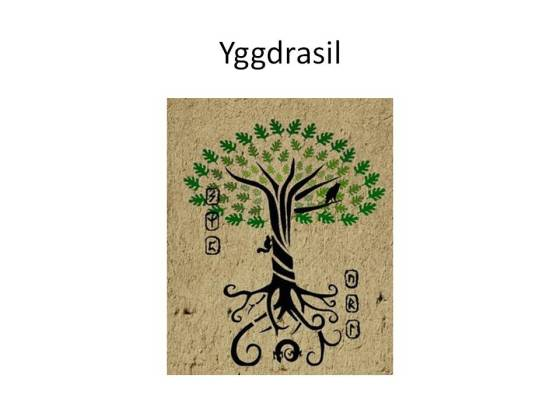 The Tree Yggdrasil supposed to be the Tree at Castlefreke, Clonakilty.